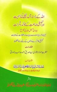 Allah kay Rasta main Nikalnay ki Ahmiat By Maulana Siddiq Ahmad Bandvi اللہ کے راستہ میں نکلنے کی اہمیت